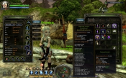 Dragon Nest - Gameplay Screenshot #2